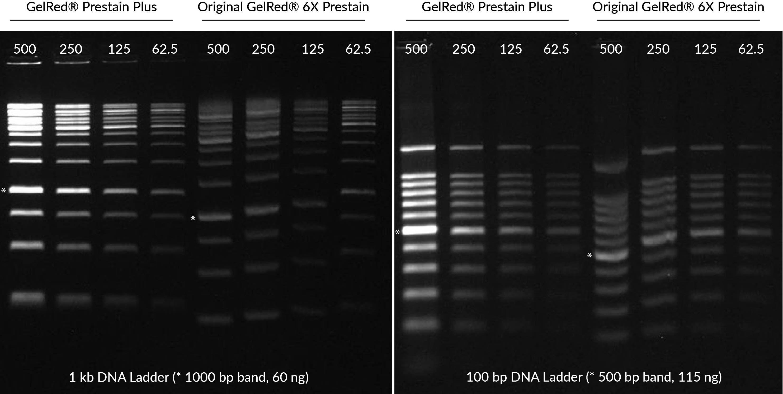 GelRed® Prestain Plus 6X DNA Loading Dye