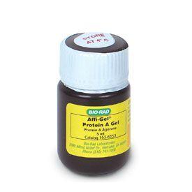 Bio-Rad Affi-Gel Protein A Support