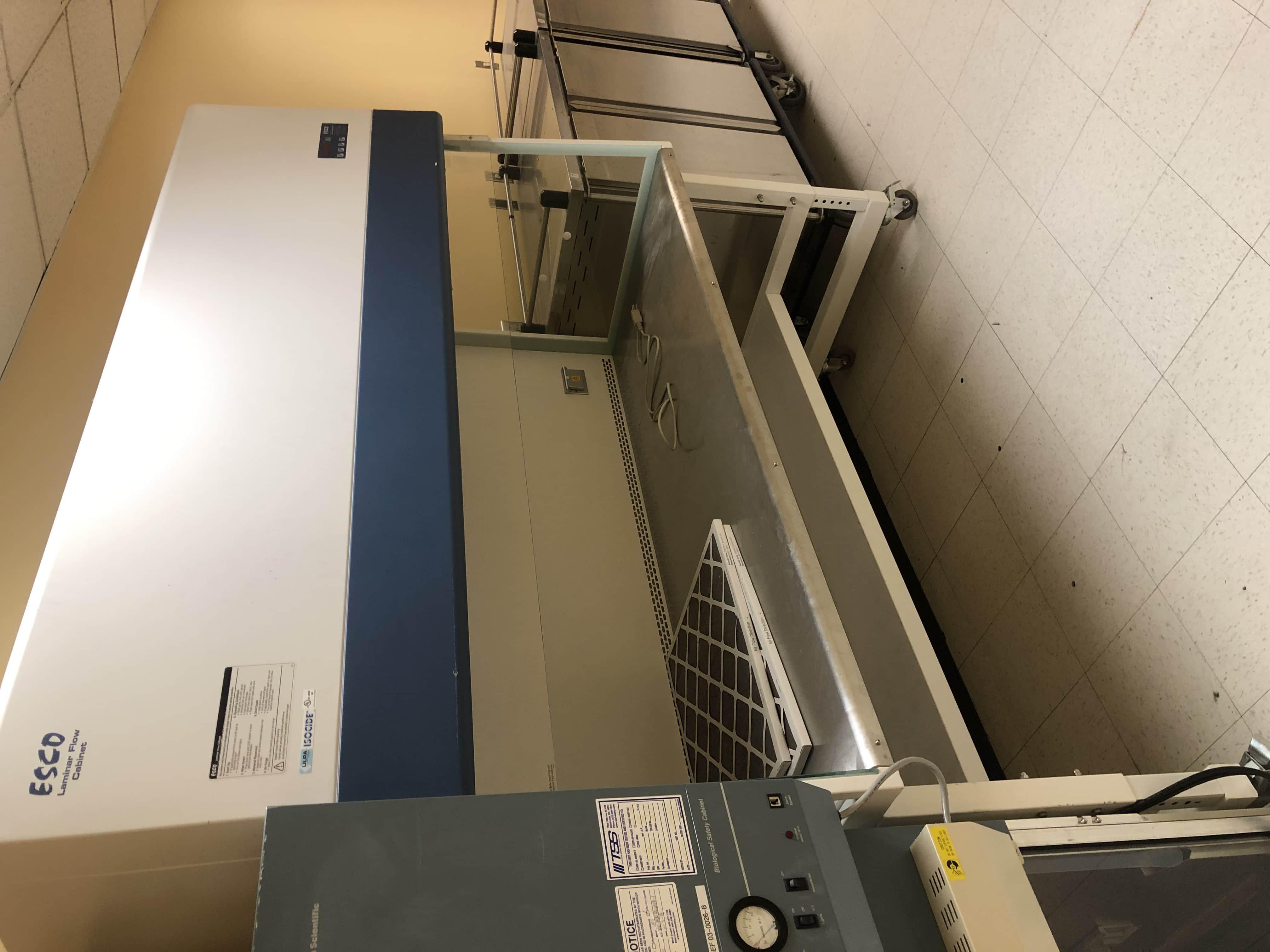 ESCO Laminar Flow Cabinet 6ft