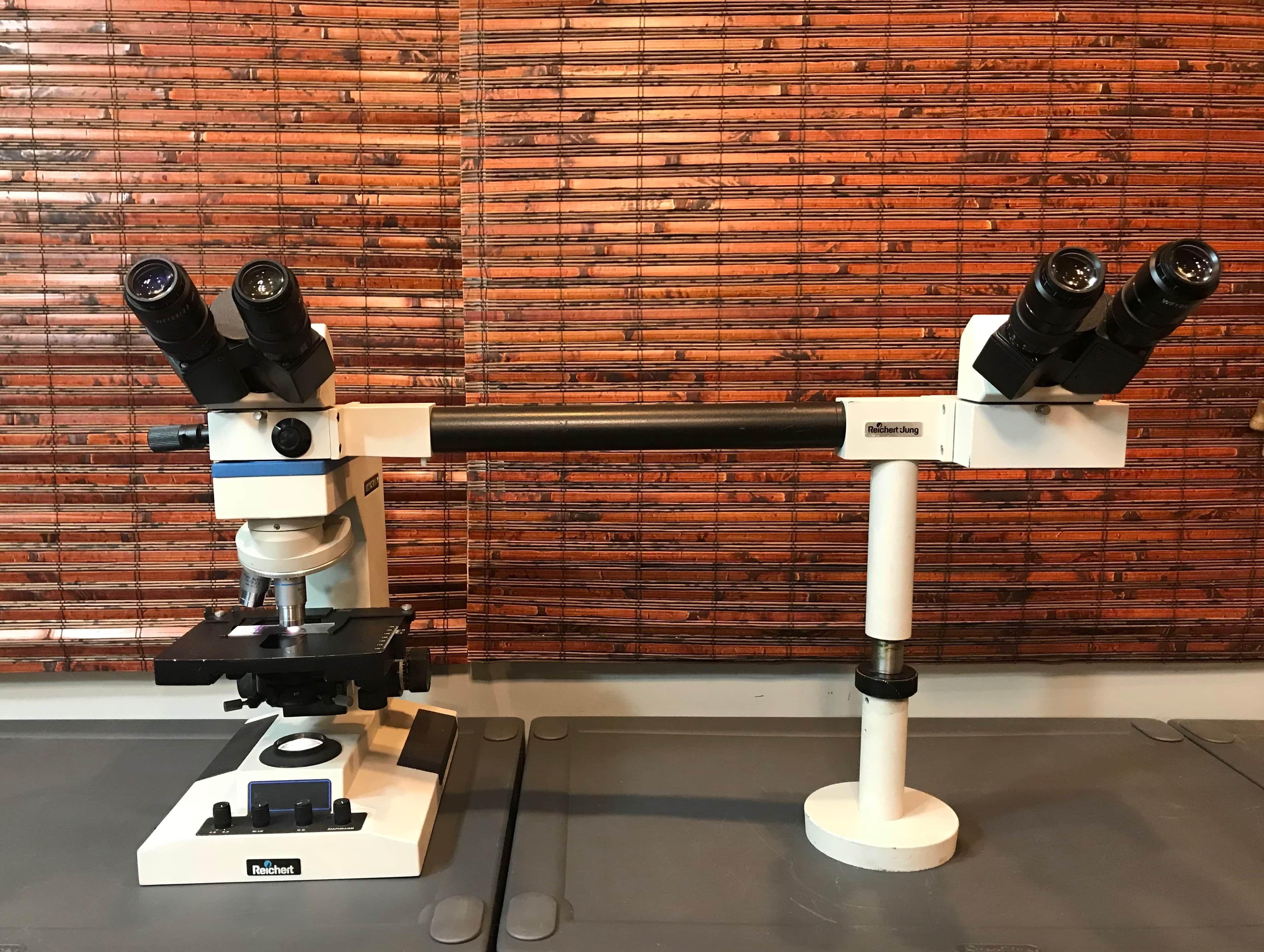 Reichert - Leica Teaching Microscope