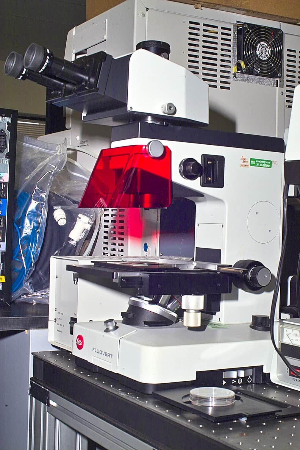 E. LEITZ FLUOVERT INVERTED BIOLOGICAL MICROSCOPE FOR FLUORESCENCE AND PHASE STUDIES