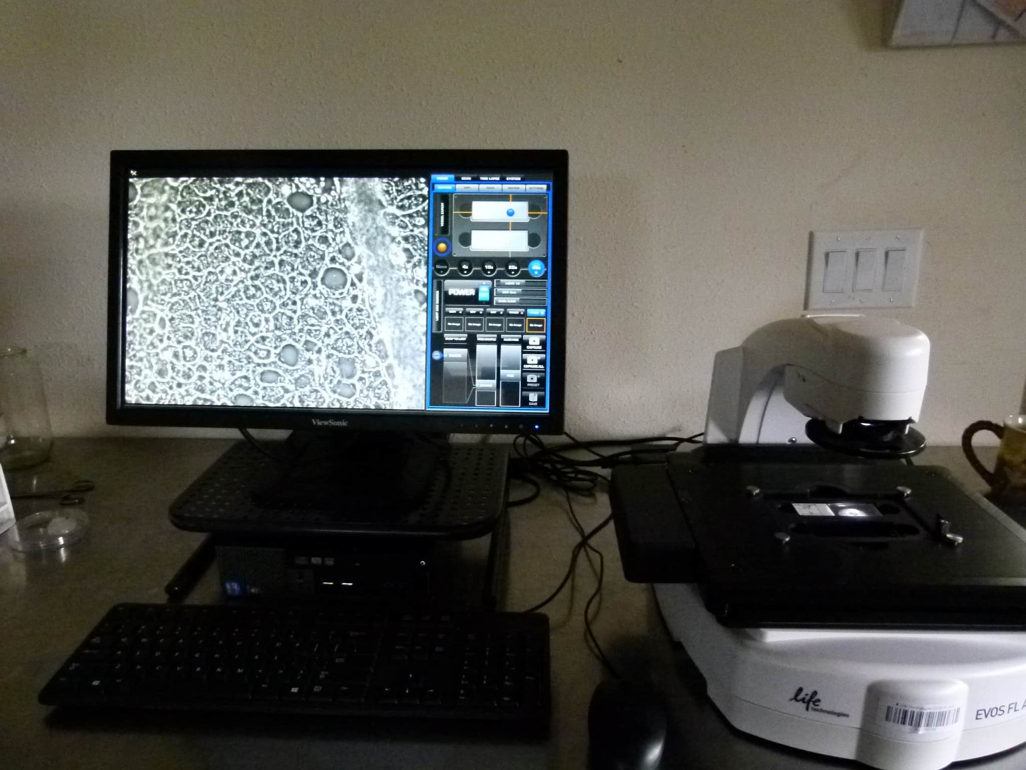 Life Technologies EVOS AUTO FL Fluorescence Imaging System with Accessories