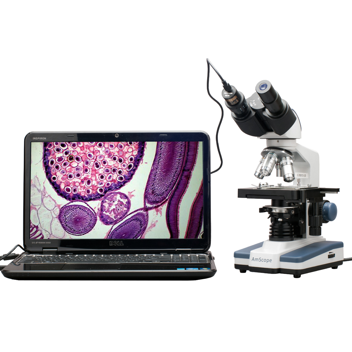 AmScope LED Digital Binocular Microscope