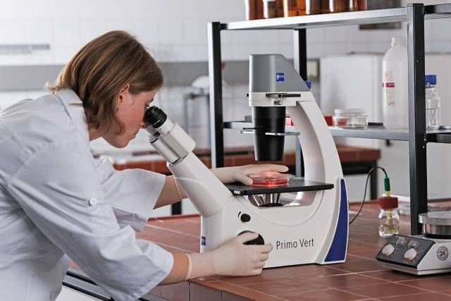 ZEISS Primovert Inverted Microscope for Routine Cell Culture