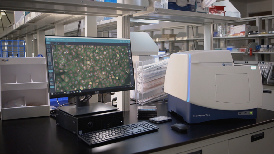 MetaMorph Microscopy Automation and Image Analysis Software