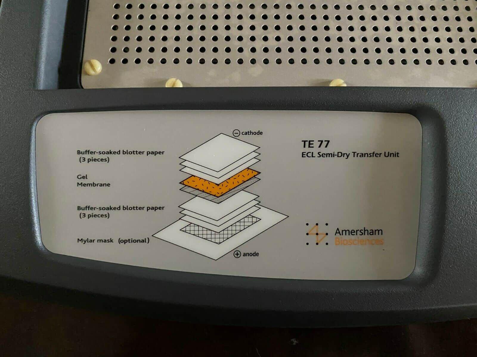 GE Healthcare Amersham Biosciences TE77 Semi-Dry Transfer Unit for Western Blot