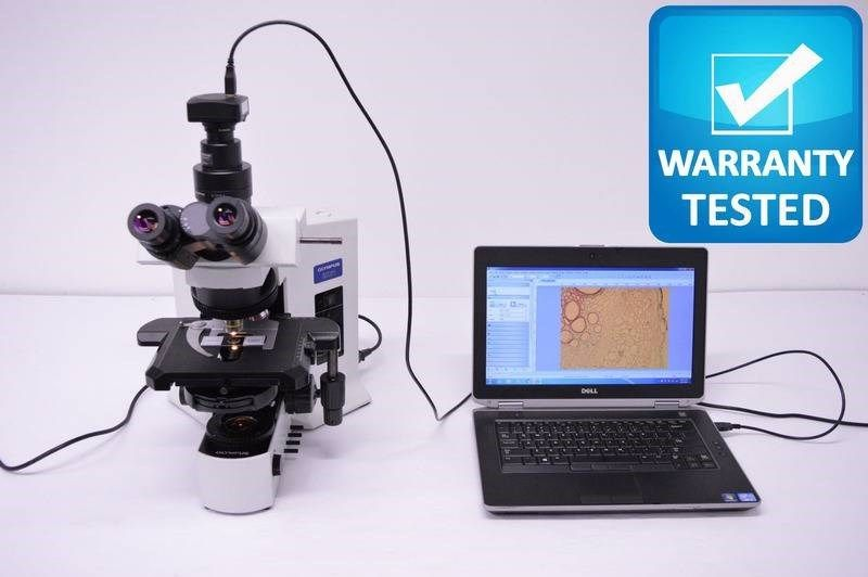 Olympus BX51 Microscope Phase Contrast Darkfield Pred BX53
