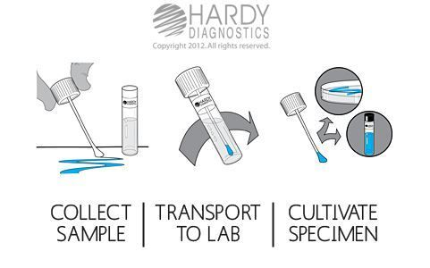 Hardy Diagnostics EnviroTrans™ Neutralizing Buffer