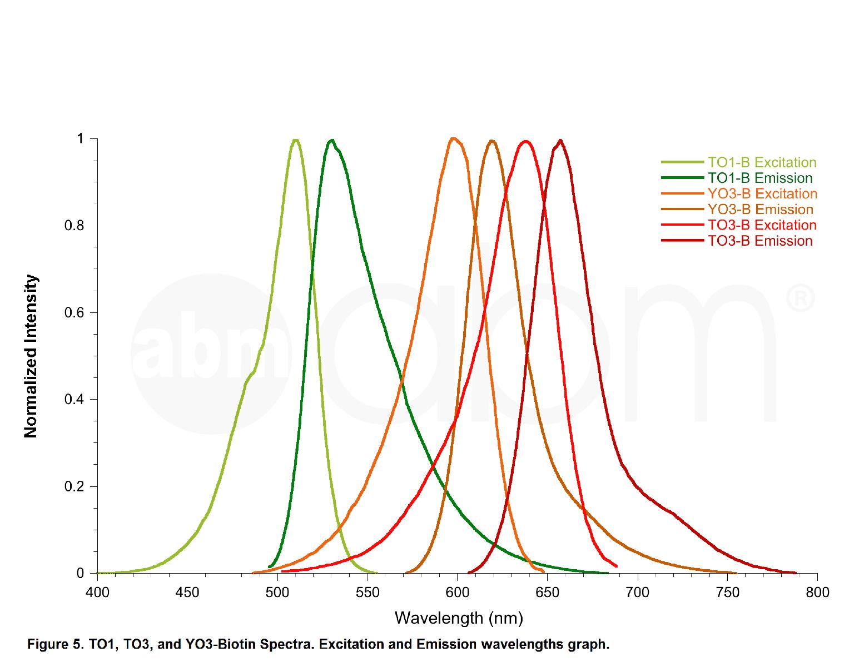 TO1-3PEG-Biotin Fluorophore