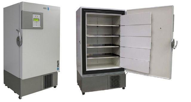 ABS 25 cu-ft Upright Ultra-Low Freezer