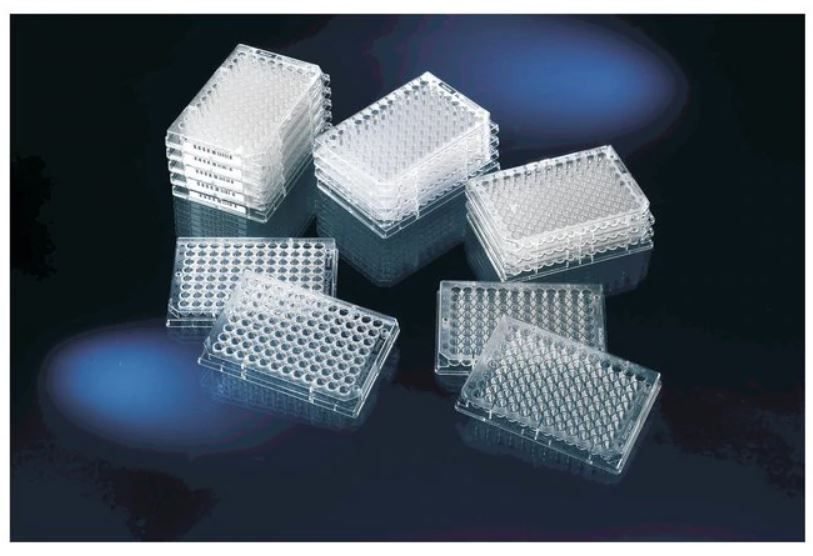 Thermo Scientific Clear Flat-Bottom Immuno Nonsterile 96-Well Plates