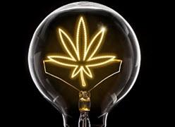 Biosynthesis and Medicinal Value of Key Cannabinoids