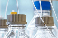 Lab Water and the Impact on Liquid Chromatography Performance